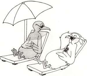 Tắm nắng cũng gây nghiện
