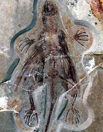 Hóa thạch còn nguyên vẹn của một con thằn lằn cổ biết bay