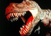 Khủng long tuyệt chủng đã không dẫn đến sự xuất hiện của các loài động vật hữu nhũ ngày nay