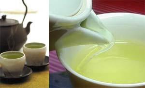 Tác dụng của Theanine trong trà