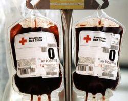 Chuyển đổi các nhóm máu A và B thành nhóm cho được mọi người