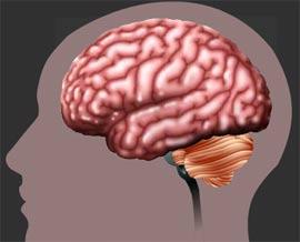Trục trặc trí nhớ tạo ra ký ức về tiền kiếp