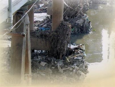 Những dòng sông sắp qua đời!