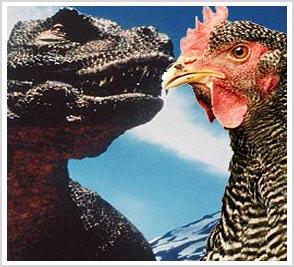 Khủng long bạo chúa là anh em với gà