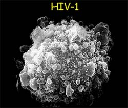 MK-0518: Thuốc mới trị HIV