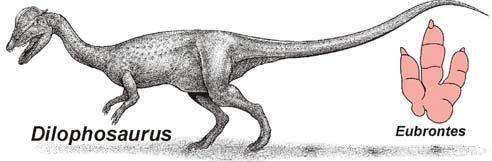 Tìm thấy khủng long xơi cá mập ở Utah