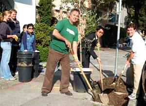 """1 triệu cây xanh để """"làm sạch"""" New York"""