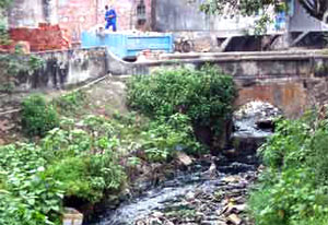 Sông Nhuệ, sông Đáy có nguy cơ bị ''khai tử''