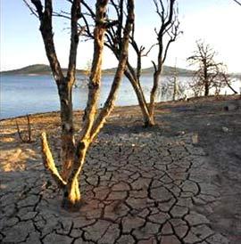 Úc: nguy cơ thiếu nước ở các thành phố lớn
