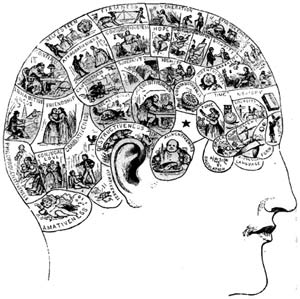 Não tướng học - khoa học hay giả trá?