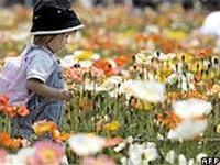 Nhật: số trẻ em giảm ở mức kỷ lục