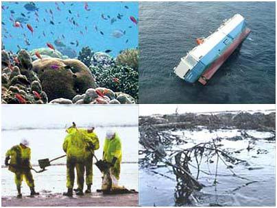 Từ chuyện váng dầu, cần tăng cường bảo vệ môi trường biển