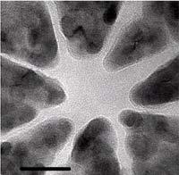Chế tạo các linh kiện nhỏ dưới 10 nm bằng kính hiển vi điện tử