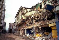 New Zealand: 6 tiếng đồng hồ, 3 trận động đất