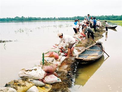 Quảng Trị: mưa lớn gây thiệt hại nặng