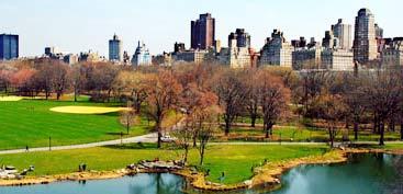 Công viên nhỏ làm dịu mát những thành phố lớn