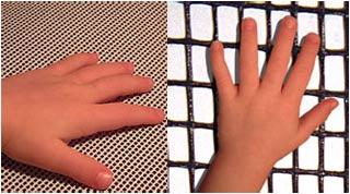Chiều dài ngón tay tiết lộ học lực
