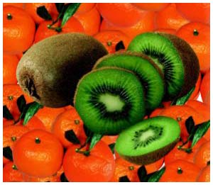 Vitamin C có nhiều trong các món ăn từ thực vật