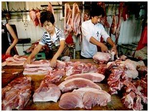 Sản xuất thịt nhân tạo từ... tế bào gốc
