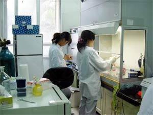 Tiếp nhận nhiều mẫu bệnh phẩm nghi nhiễm virus H5N1