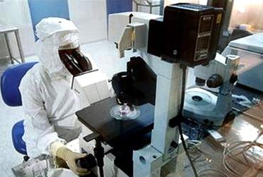 Tái tạo tế bào gốc từ da chuột
