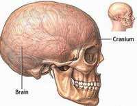 Tái tạo khuôn mặt theo hộp sọ