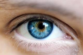 Chữa bệnh mù bằng cách cấy tế bào mầm