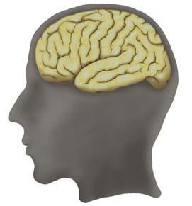 Thuốc chữa ung thư có thể làm tăng trí nhớ