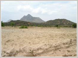 28% diện tích đất đai của Việt Nam bị hoang hóa