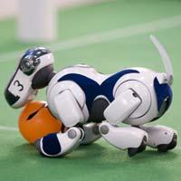 Thế vận hội... robot