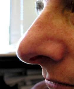 Phát hiện ô nhiễm môi trường bằng... mũi