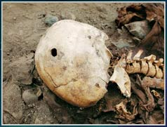 Phát hiện xác người cổ tại châu Mỹ
