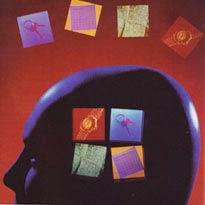 Không có quá khứ, não không tính được tương lai!