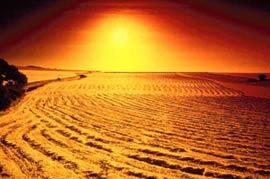 LHQ: 50 triệu người mất chỗ ở do sa mạc hóa