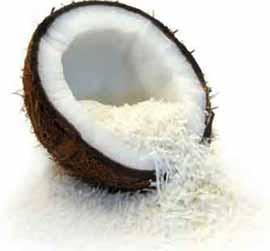 Giải pháp mới bảo quản trái dừa tươi