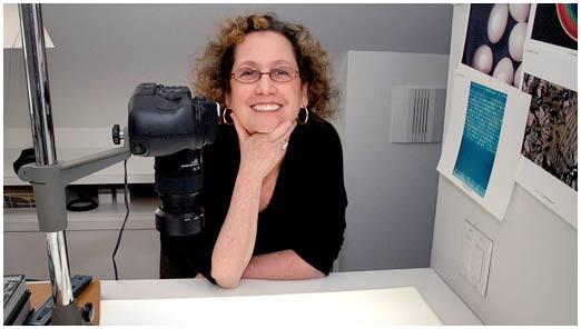 Bà Felice Frankel trong phòng làm việc ở Học viện MIT