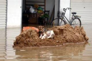 Trung Quốc: 360 người thiệt mạng trong mùa mưa