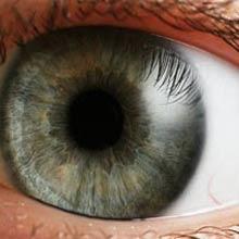 Phương pháp chữa trị trên gien khiến não hoạt động dù bị mù bẩm sinh