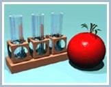 Quản lý an toàn sinh học với sinh vật biến đổi gen