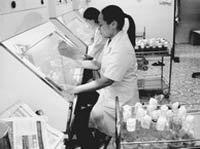 Lạng Sơn áp dụng nhiều tiến bộ khoa học - kỹ thuật vào sản xuất