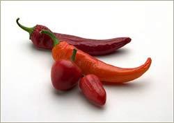 Con người đã biết dùng ớt cách đây 1.500 năm