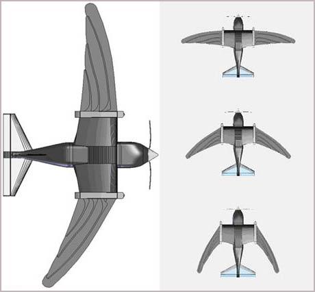 RoboSwift mô phỏng cách bay của chim én