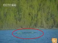 """Trung Quốc: Công bố đoạn băng """"quái vật hồ Kanasi"""""""