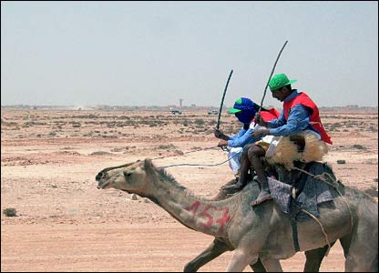 Cuộc đua lạc đà lớn nhất thế giới