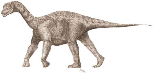 Một con Titanosaur niên thiếu, với các vảy xương trên lưng được các nhà khoa học cho là giúp nó tự vệ trước những cú cắn của các con ăn thịt.