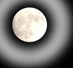Đừng đổ lỗi cho trăng tròn?