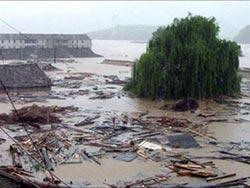 Thế giới oằn mình vì bão và động đất
