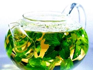 Thử nghiệm chất chống ung thư từ trà xanh