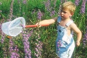Làm vườn giúp chống lại chứng béo phì ở tuổi thơ