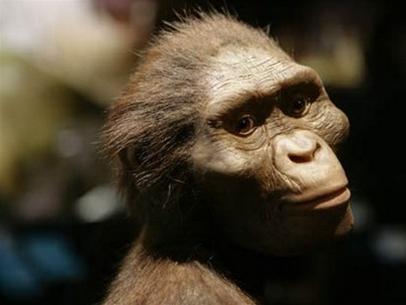 Lần đầu tiên triển lãm cụ tổ của loài người